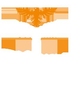 Bussmann Header Pic